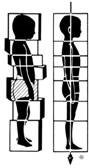 Rolfing - Postural Realignment